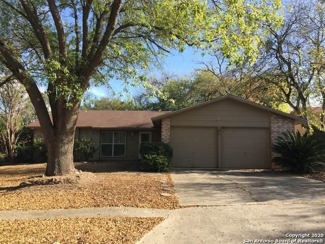 12932 Reveille St, San Antonio, TX 78233 (MLS #1496109) :: REsource Realty