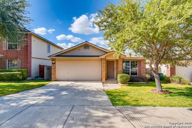 523 Limestone Flt, San Antonio, TX 78251 (MLS #1496117) :: Alexis Weigand Real Estate Group