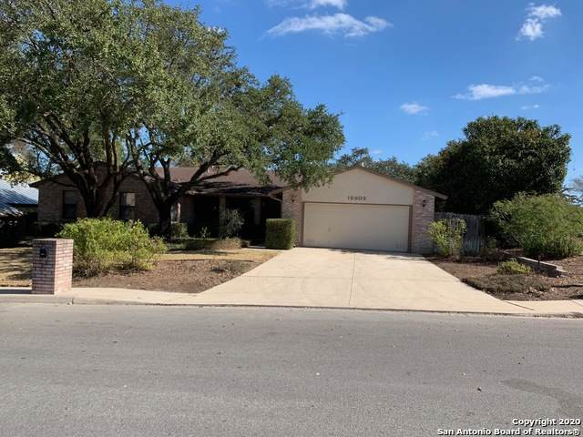 15603 Trail Bluff St, San Antonio, TX 78247 (MLS #1496335) :: The Glover Homes & Land Group