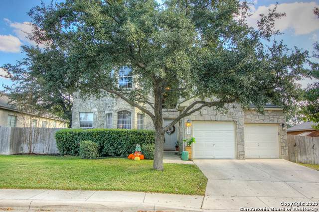 4714 Shavano Bark, San Antonio, TX 78230 (MLS #1496358) :: The Glover Homes & Land Group