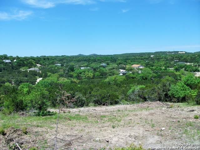 651 Hillside Dr, Spring Branch, TX 78070 (MLS #1496508) :: Real Estate by Design