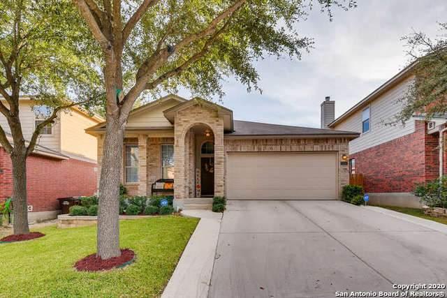 12114 Harris Hawk, San Antonio, TX 78253 (MLS #1496627) :: The Castillo Group