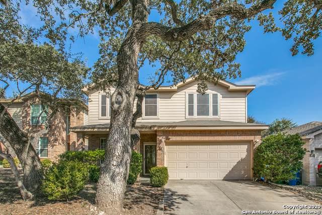 15934 Drexel Run, San Antonio, TX 78247 (MLS #1496768) :: Alexis Weigand Real Estate Group