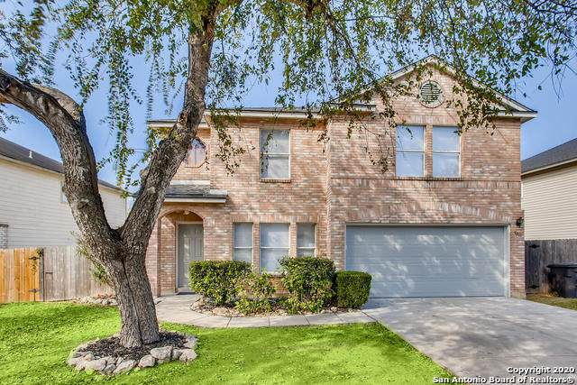 5811 Spring Pebble, San Antonio, TX 78247 (MLS #1496845) :: The Castillo Group