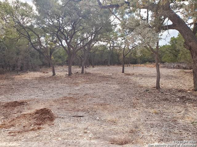 TBD Spanish Oak, Bandera, TX 78003 (MLS #1497156) :: The Castillo Group