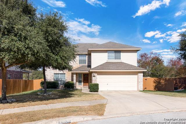 12407 Cotton Crk, San Antonio, TX 78253 (MLS #1497239) :: Alexis Weigand Real Estate Group