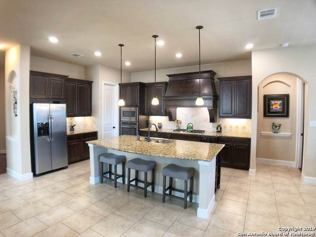 25823 Berberis, San Antonio, TX 78261 (MLS #1497370) :: Alexis Weigand Real Estate Group