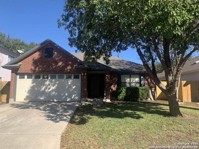 9222 Sunlit Pt, San Antonio, TX 78240 (MLS #1497374) :: The Castillo Group