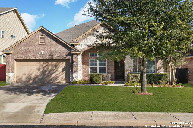 11639 Hunter Ivy, San Antonio, TX 78253 (MLS #1497379) :: The Castillo Group