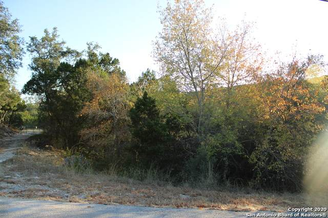 1902 Johnson Rd, Canyon Lake, TX 78133 (MLS #1497470) :: Santos and Sandberg