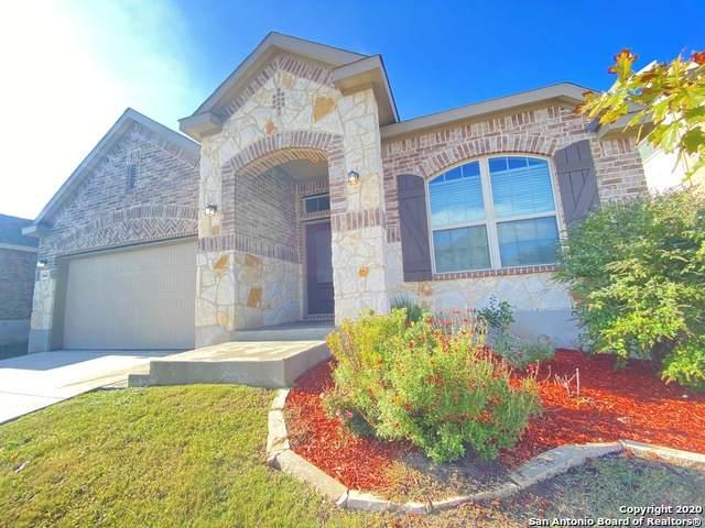 14443 Palomino Pl, San Antonio, TX 78254 (#1497595) :: The Perry Henderson Group at Berkshire Hathaway Texas Realty