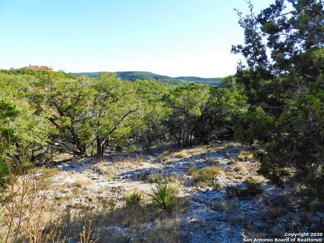 LOT 123 Pr 1733, Mico, TX 78056 (MLS #1497730) :: Alexis Weigand Real Estate Group