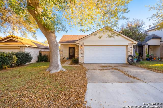 11410 Crescent Peak, San Antonio, TX 78245 (MLS #1497811) :: The Glover Homes & Land Group