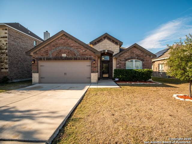 11318 Begonia Rock, San Antonio, TX 78245 (MLS #1498001) :: Maverick