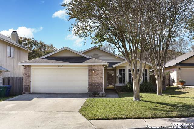 13906 Dove Hollow Dr, San Antonio, TX 78232 (MLS #1498052) :: Alexis Weigand Real Estate Group