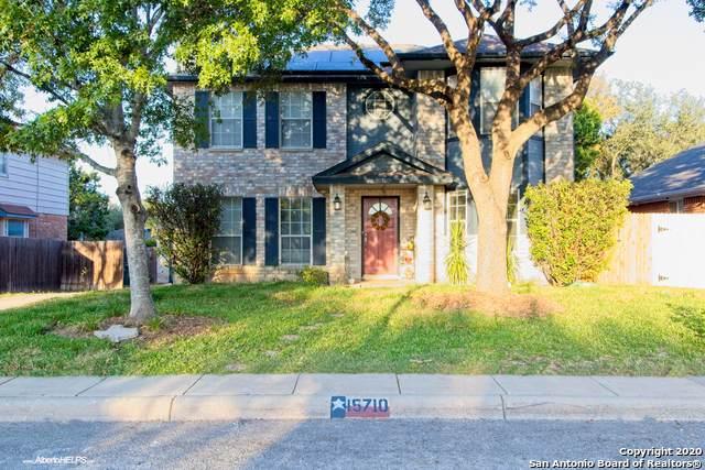 15710 Knollstone, San Antonio, TX 78247 (MLS #1498057) :: Alexis Weigand Real Estate Group