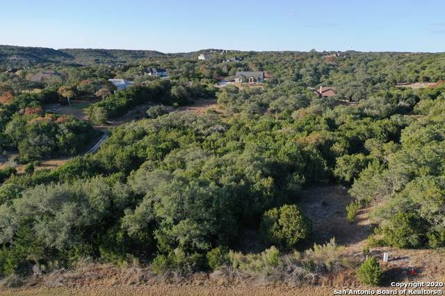 2520 Comal Spgs, Canyon Lake, TX 78133 (MLS #1498240) :: Tom White Group