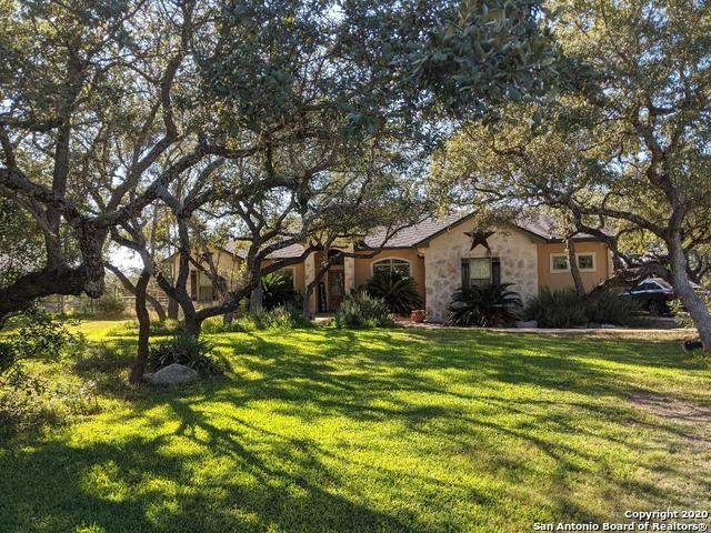 26215 High Timber Pass St, San Antonio, TX 78260 (MLS #1498551) :: Real Estate by Design