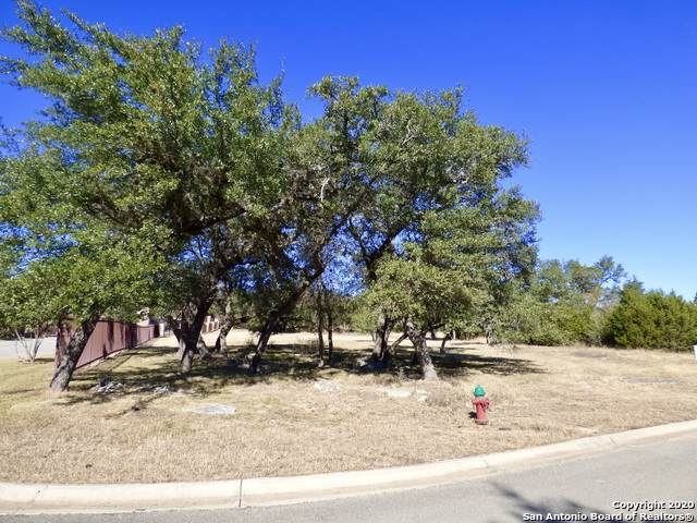 2507 George Pass, Canyon Lake, TX 78133 (MLS #1498751) :: Real Estate by Design