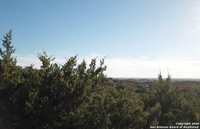 195 Bluebonnet Breeze, Canyon Lake, TX 78133 (MLS #1499019) :: The Castillo Group