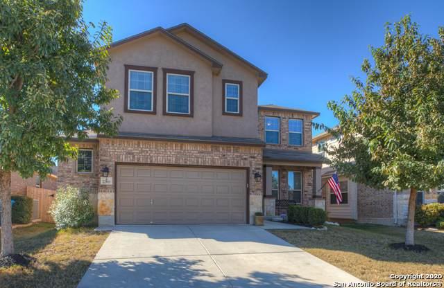 22911 Malabar Peak, San Antonio, TX 78261 (MLS #1499057) :: The Rise Property Group