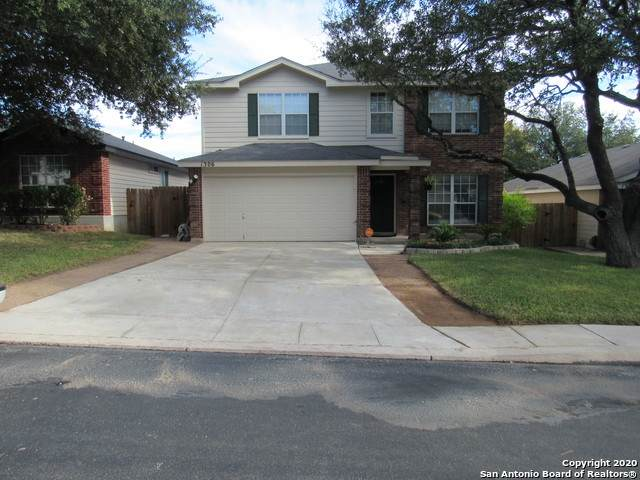1306 Lion King, San Antonio, TX 78251 (MLS #1499254) :: Vivid Realty