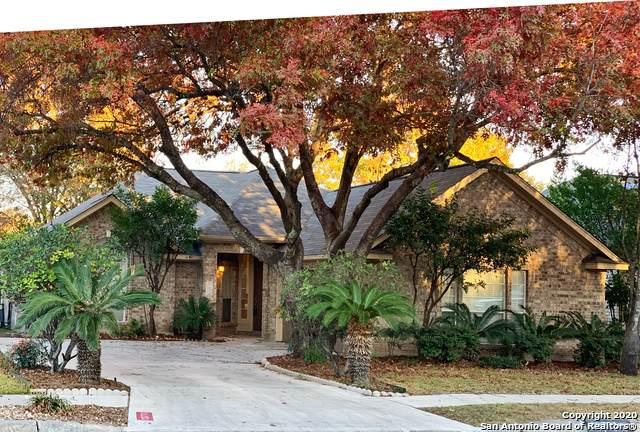13711 Auburn Oaks, San Antonio, TX 78247 (MLS #1500057) :: The Castillo Group