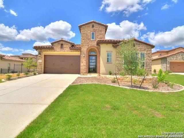 22923 Estacado, San Antonio, TX 78261 (MLS #1500333) :: The Rise Property Group