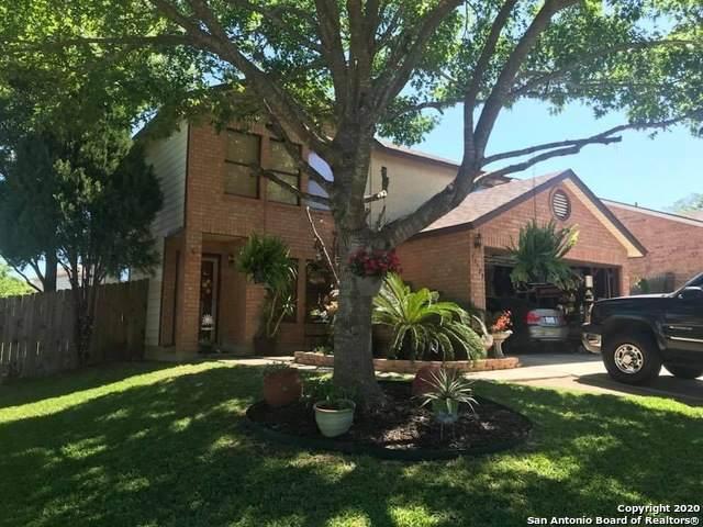13523 Auburn Oaks, San Antonio, TX 78247 (MLS #1500591) :: The Rise Property Group