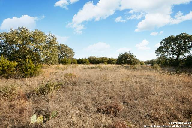 211 Stargrass, Spring Branch, TX 78070 (MLS #1500615) :: The Rise Property Group