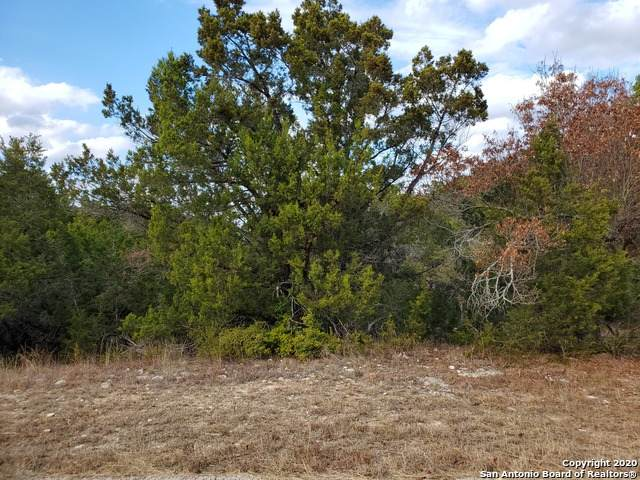 725 Firefly Dr, Canyon Lake, TX 78133 (MLS #1500872) :: Alexis Weigand Real Estate Group