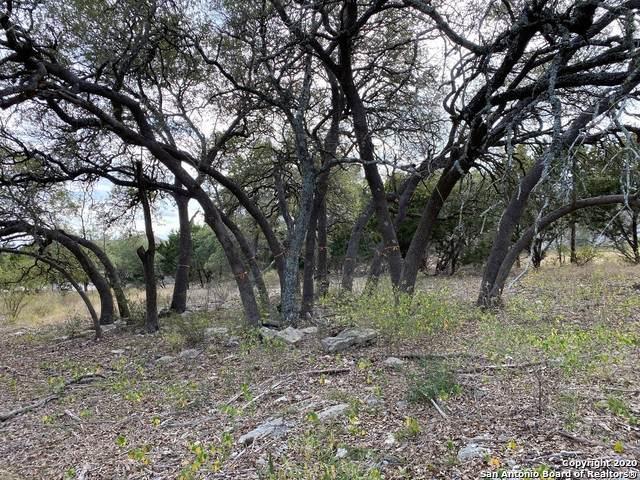 1329 (LOT 1020) Merlot, New Braunfels, TX 78132 (MLS #1500938) :: Real Estate by Design