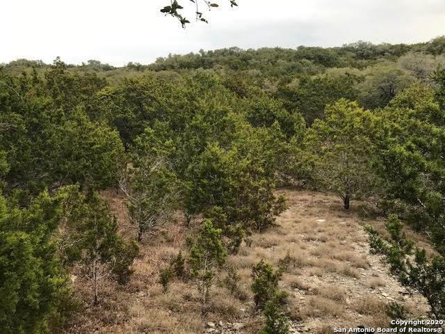 1212 Primrose Path, Canyon Lake, TX 78133 (MLS #1501563) :: Neal & Neal Team