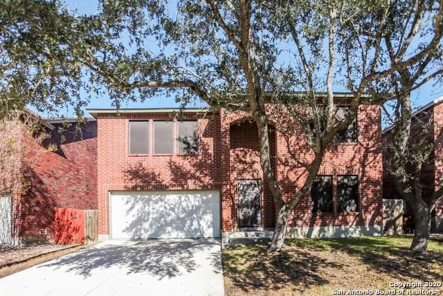 11919 Auburn Brook, San Antonio, TX 78253 (MLS #1501716) :: The Lugo Group