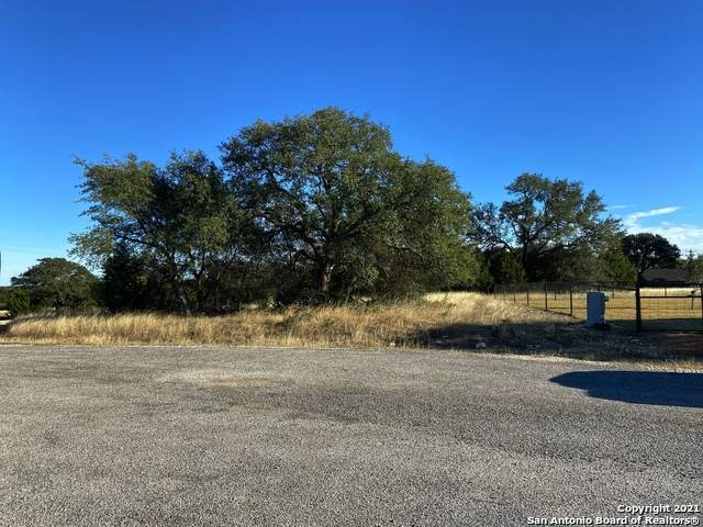 LOT 742 Silas Parker, Blanco, TX 78606 (MLS #1501847) :: JP & Associates Realtors