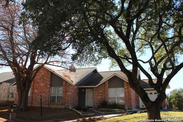 4008 Oak Ct, Schertz, TX 78108 (MLS #1502142) :: Concierge Realty of SA