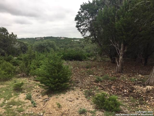 116 Chaparral Pl W, Ingram, TX 78025 (MLS #1502283) :: Tom White Group