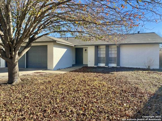 8426 Greenham, San Antonio, TX 78239 (MLS #1502639) :: The Lugo Group