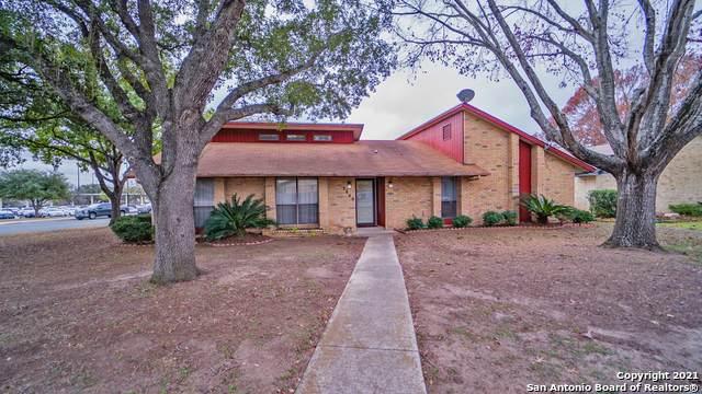 5846 Royal Haven, San Antonio, TX 78239 (MLS #1502820) :: Real Estate by Design