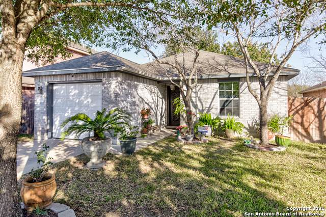 4042 Salty Marsh, San Antonio, TX 78245 (MLS #1502948) :: Tom White Group