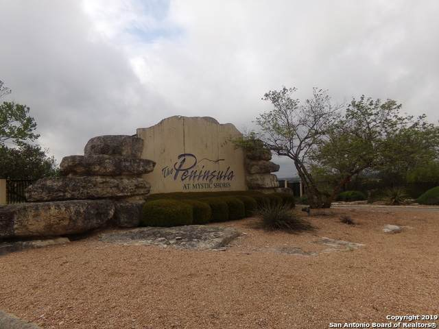 760 Pacific Pl, Spring Branch, TX 78070 (MLS #1502949) :: The Rise Property Group