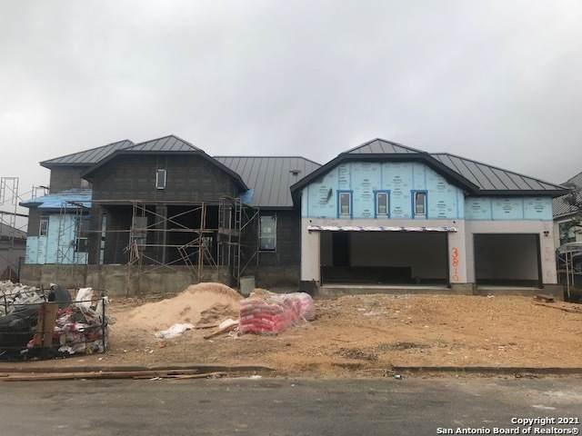 3810 Luz Del Faro, San Antonio, TX 78261 (MLS #1502952) :: Real Estate by Design