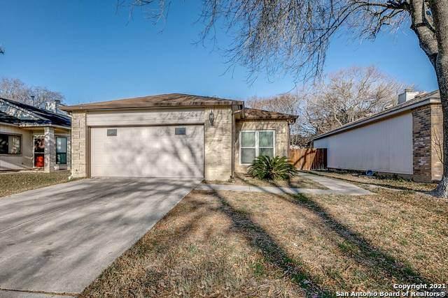 5619 Spring Night St, San Antonio, TX 78247 (MLS #1503045) :: The Lugo Group