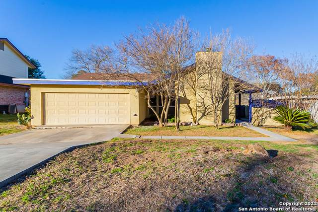 3113 Old Ranch Rd, San Antonio, TX 78217 (MLS #1503145) :: Tom White Group