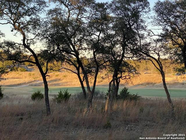 LOT 30 Alberi Lane, Boerne, TX 78006 (MLS #1503236) :: JP & Associates Realtors
