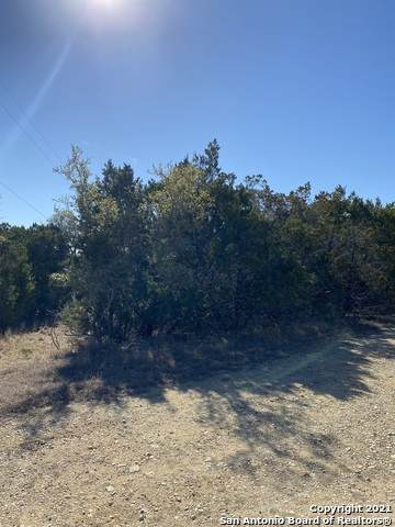 LOT 12 Frio, Bandera, TX 78003 (MLS #1503569) :: Real Estate by Design