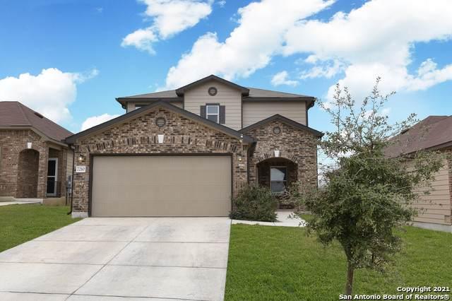 7210 Palomino Bay, San Antonio, TX 78252 (MLS #1503618) :: The Rise Property Group