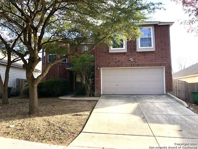 10146 Cedarcliff, San Antonio, TX 78245 (MLS #1503668) :: Alexis Weigand Real Estate Group