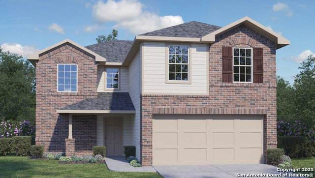 8118 Chestnut Blue, Converse, TX 78109 (MLS #1503682) :: The Lugo Group