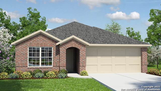 8110 Chestnut Blue, Converse, TX 78109 (MLS #1503693) :: The Lugo Group